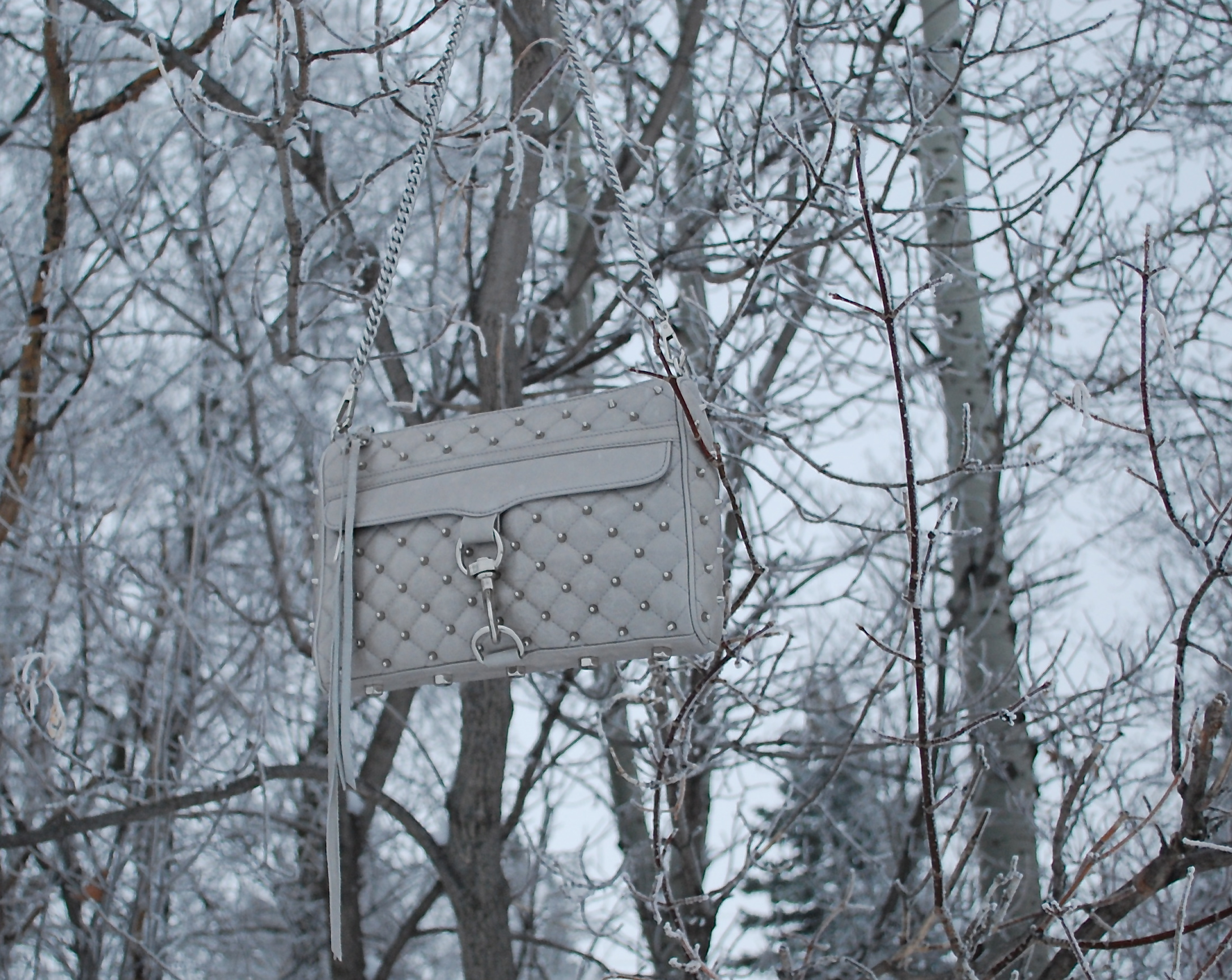 Hanging shot of purse
