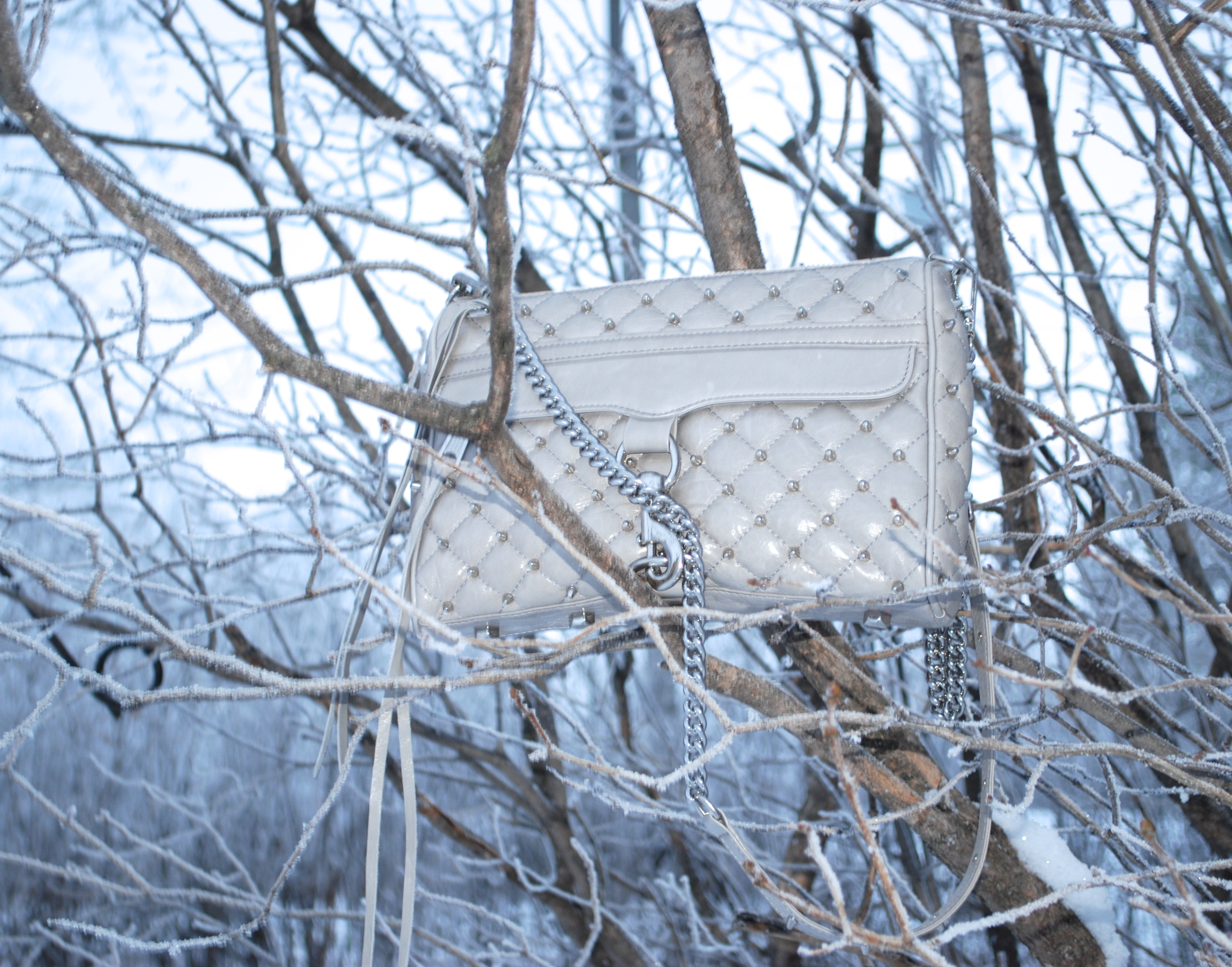 Purse shot in trees